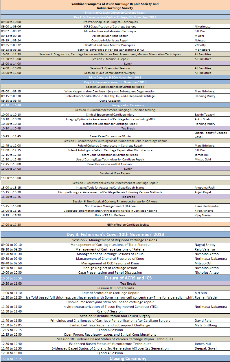 Final ICS 2013 Schedule